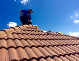Inspector on a roof
